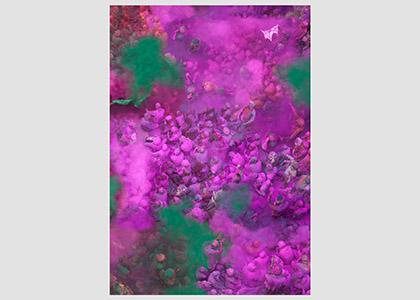 Kolorit (Purple)